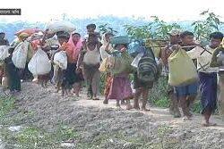 মিয়ানমারের বিরুদ্ধে আইসিজে-তে অভিযোগপত্র দিলো গাম্বিয়া
