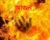 চট্টগ্রামে বস্তিতে অগ্নিকাণ্ড, দগ্ধ হয়ে পক্ষাঘাতগ্রস্ত বৃদ্ধার মৃত্যু