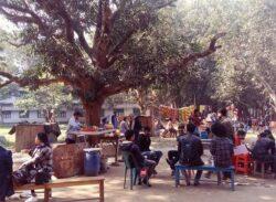 প্রাণ ফিরে পেলো রাজশাহী বিশ্ববিদ্যালয়ের শিক্ষার্থীদের চিরপরিচিত চত্বর।